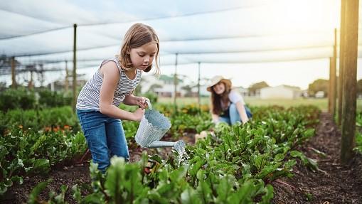 bimba piante 1 - Le piante, i bambini e la speranza di vita buona